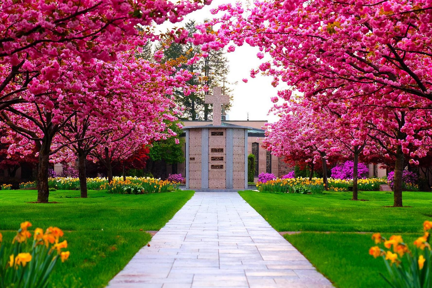 Columbarium with pink trees