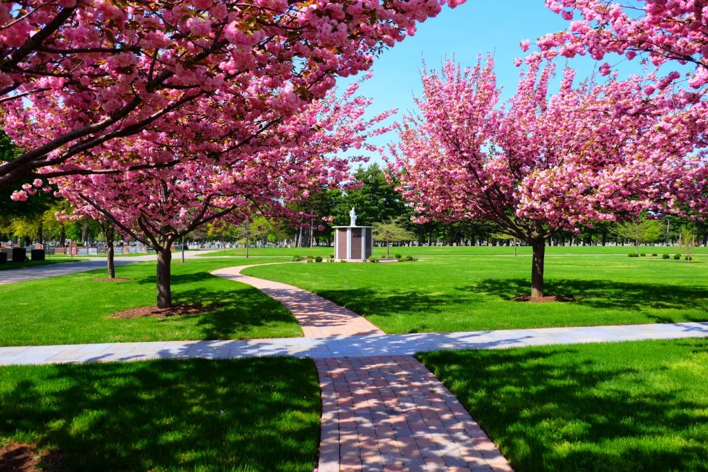 Columbarium surrounded by pink trees