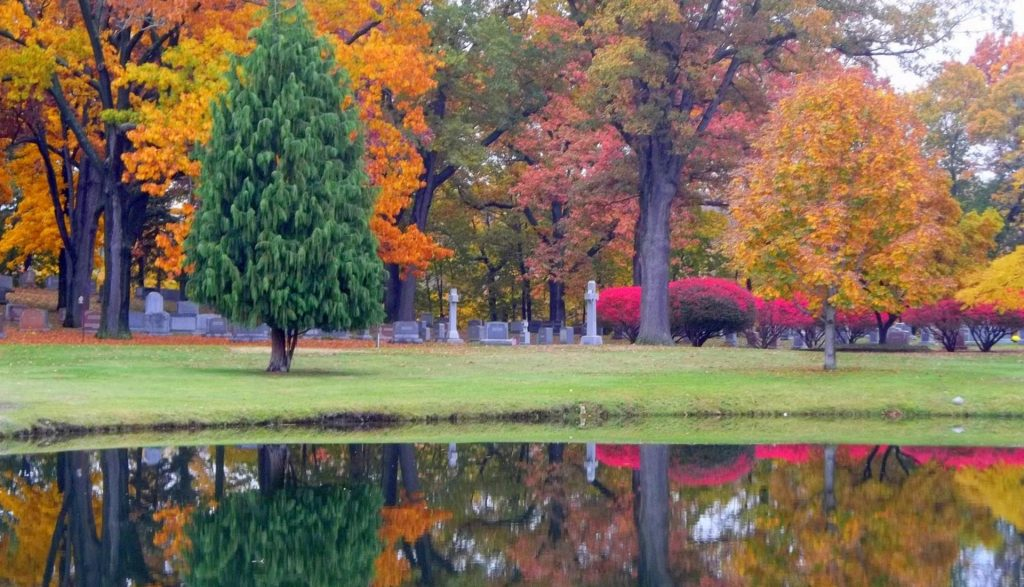 View of Holy Sepulchre Cemetery
