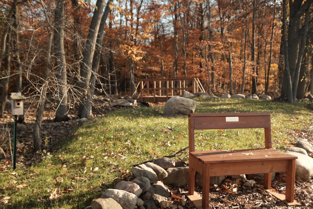 green burial area with bench